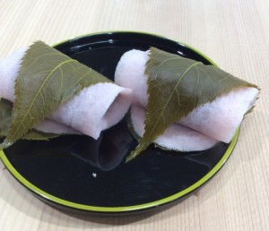 20170110焼皮桜
